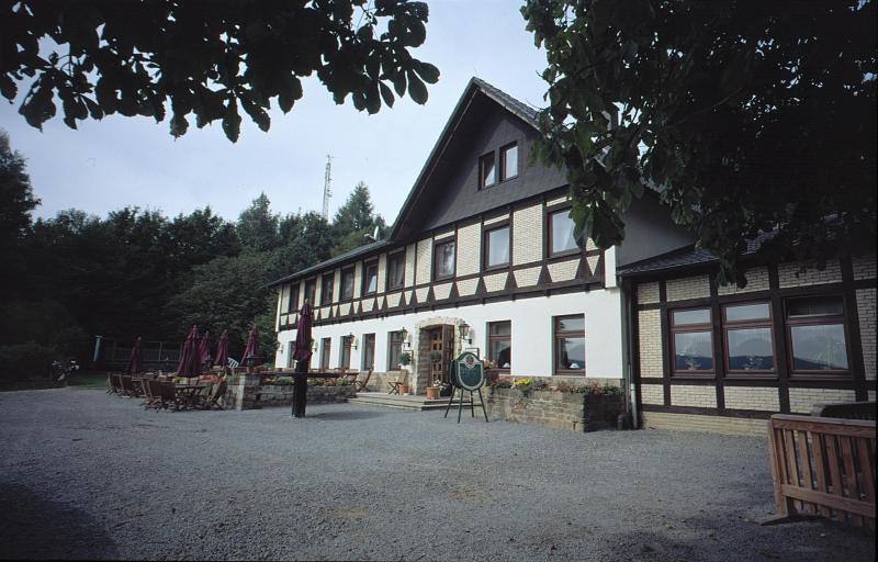 Waldquelle 1999