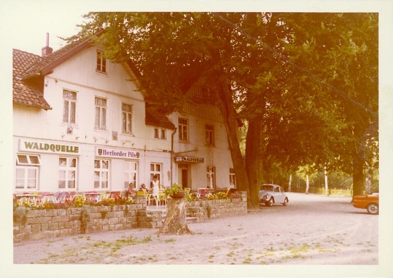 Waldquelle um 1979